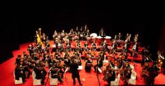microkosmos orchestra