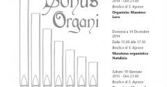 sonus organi