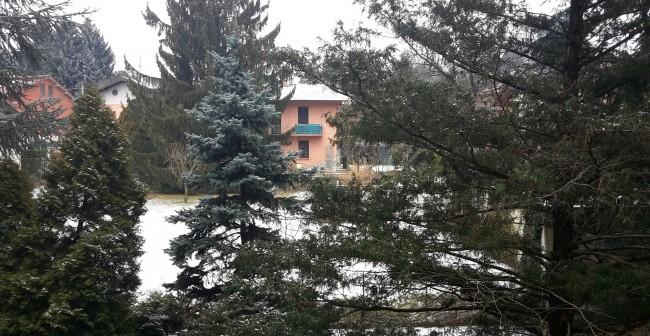 Nevicata 3-2-15