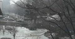 Nevicatapomeriggio