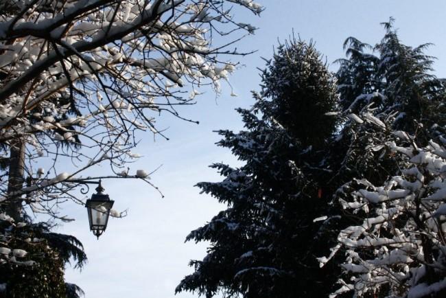 sole neve