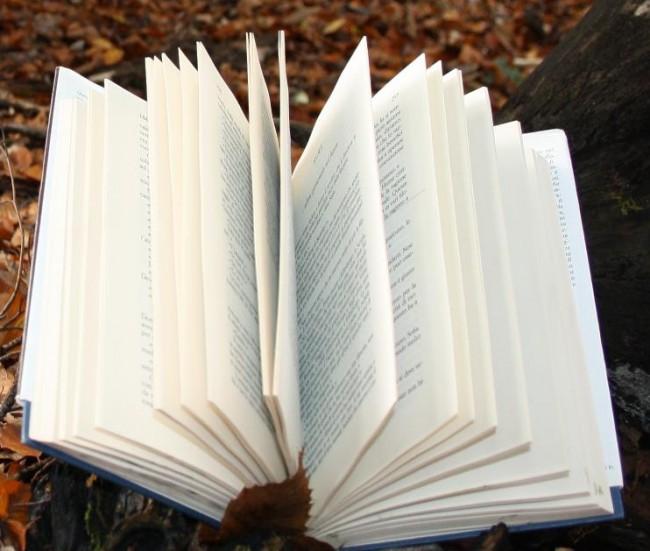 libro bosco