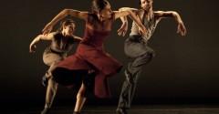 parson dance