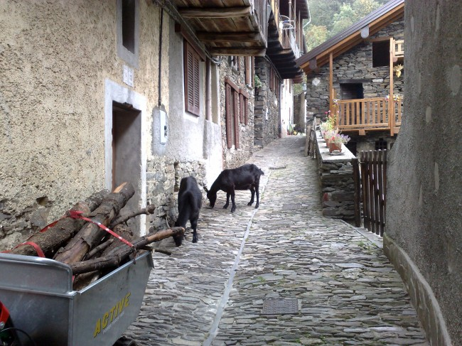 Curiglia_con_Monteviasco_(VA)_2