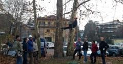 Tree climbing 4