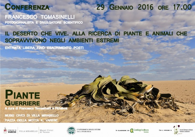 Conferenza Tomasinielli