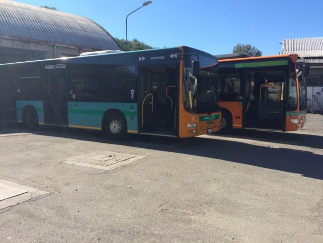 bus-urbani